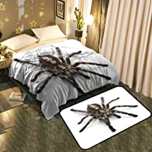 UNOSEKS-Home A Blanket and A Floor Mat Set Tarantula Spider,Poecilotheria Metallica,in Front of White Background Chic Pattern Anti-Static Blanket 30