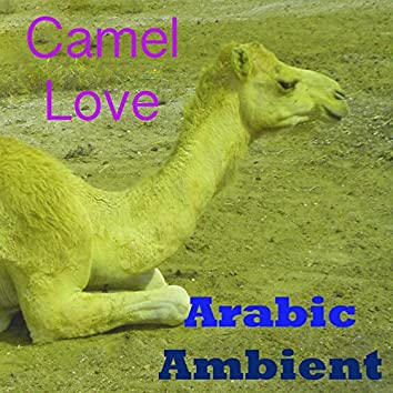 Camel Love (Arabic Ambient)