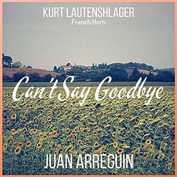 Can't Say Goodbye (feat. Kurt Lautenshlager)