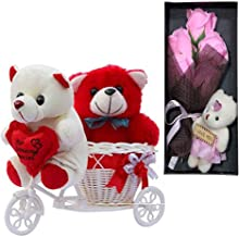 SKYTRENDS Romantic Gifts Cycle Teddy with Cute Teddy Rose Set for Wife, Girlfriend, Fiance On Valentine's Day, and Any Special Occasion