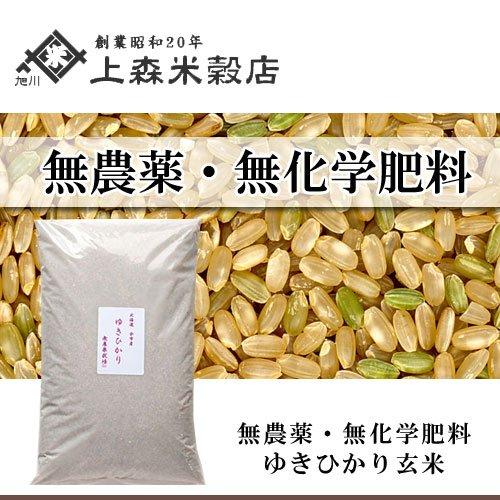 北海道産 無農薬ゆきひかり玄米5kg