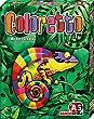 <nobr>Coloretto</nobr><br><nobr></nobr> - bei amazon kaufen