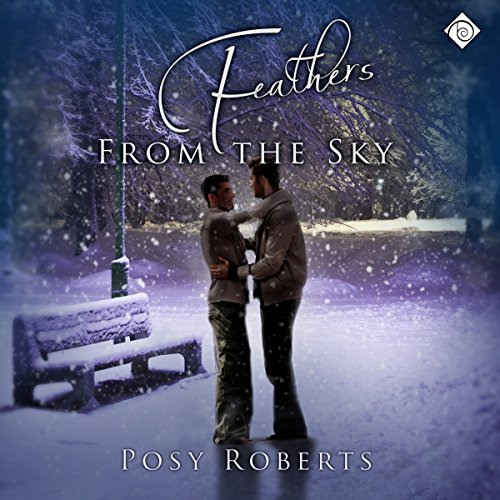 Feathers from the Sky audiobook cover art