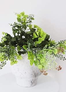Artificial Plant Maidenhair Fern Bush - 16