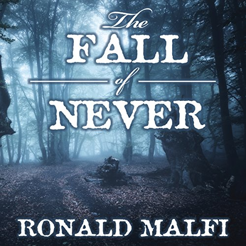 The Fall of Never audiobook cover art