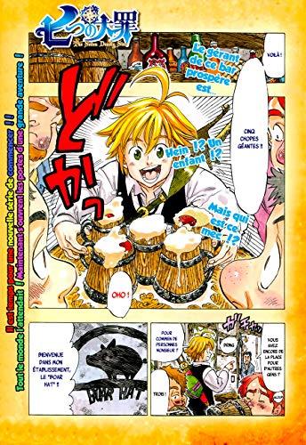 Nanatsu No Taizai (French Edition)