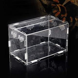 Casas para Reptiles, Tanque Transparente de la Caja de acrílico, Terrario de plástico Reptiles