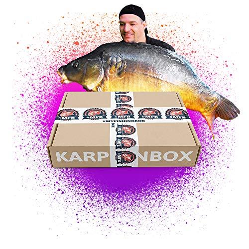 MFB KarpfenBox // Boilies, PopUps und Zubehör zum Karpfenangeln im Set