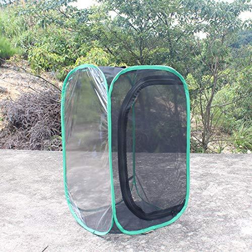 MYYINGELE Papillon Butterfly Habitat Pliable Bug Catcher Net Mesh Insectes Plant Cage Terrarium Pop-up for Kids/Child/Toddler Catching Crickets/Firefly/Caterpillars/Ladybird/Fish pour Enfants, B