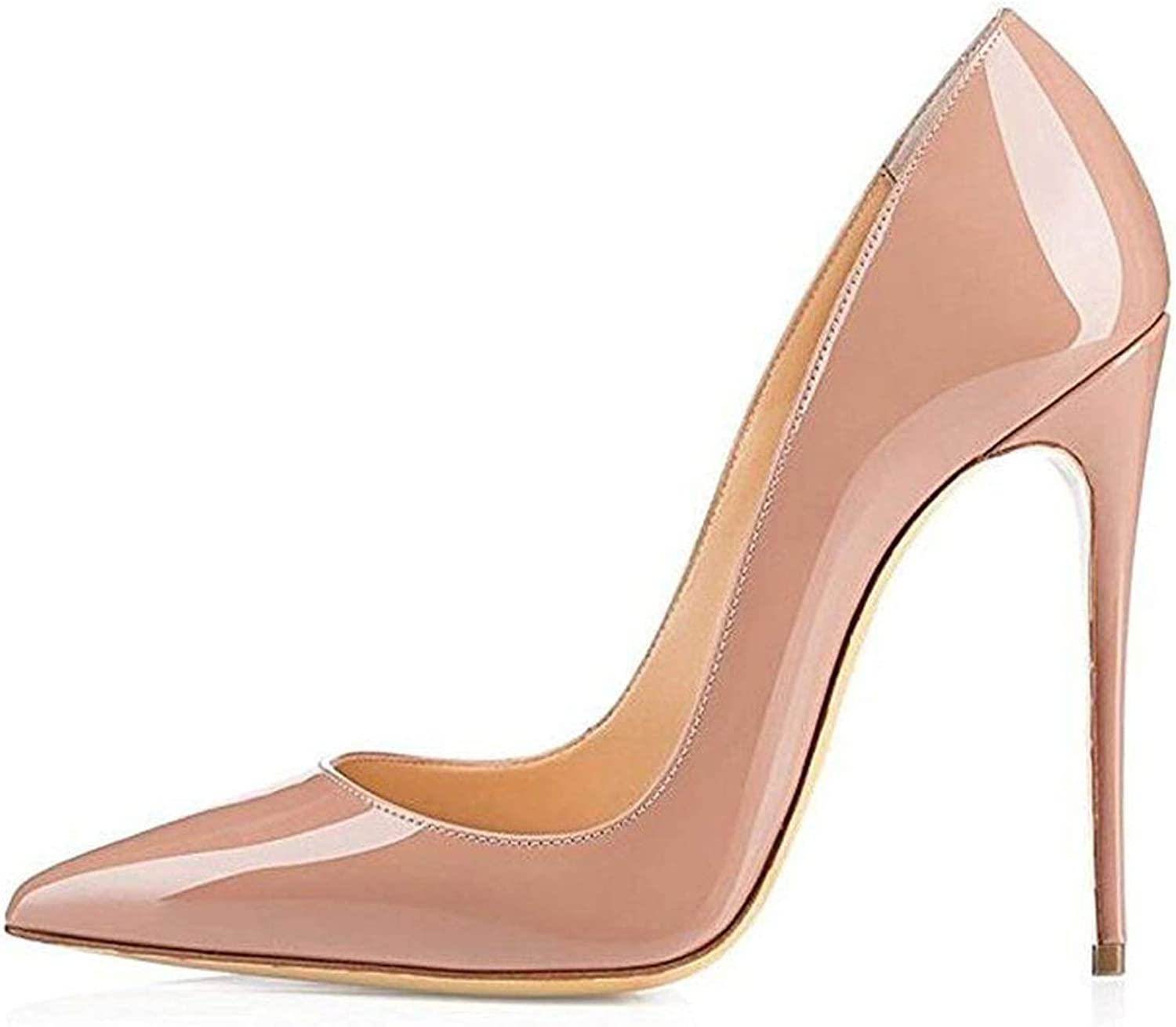 Hhhh High Heels Women Pumps 12cm Sexy Pointed Toe Wedding Party shoes Black Nude Heels Stiletto Plus Size