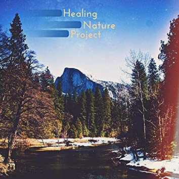 Healing Nature Project: Stress Relief, Positivity, Relaxation Act