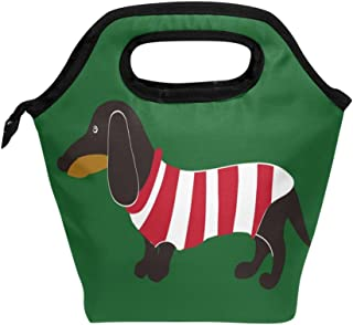 JOYPRINT Lunch Box Bag, Animal Dog Dachshund Stripe Insulated Cooler Ice Lunchbox Tote Bag Handbag for Men Women Adult Boys Girls
