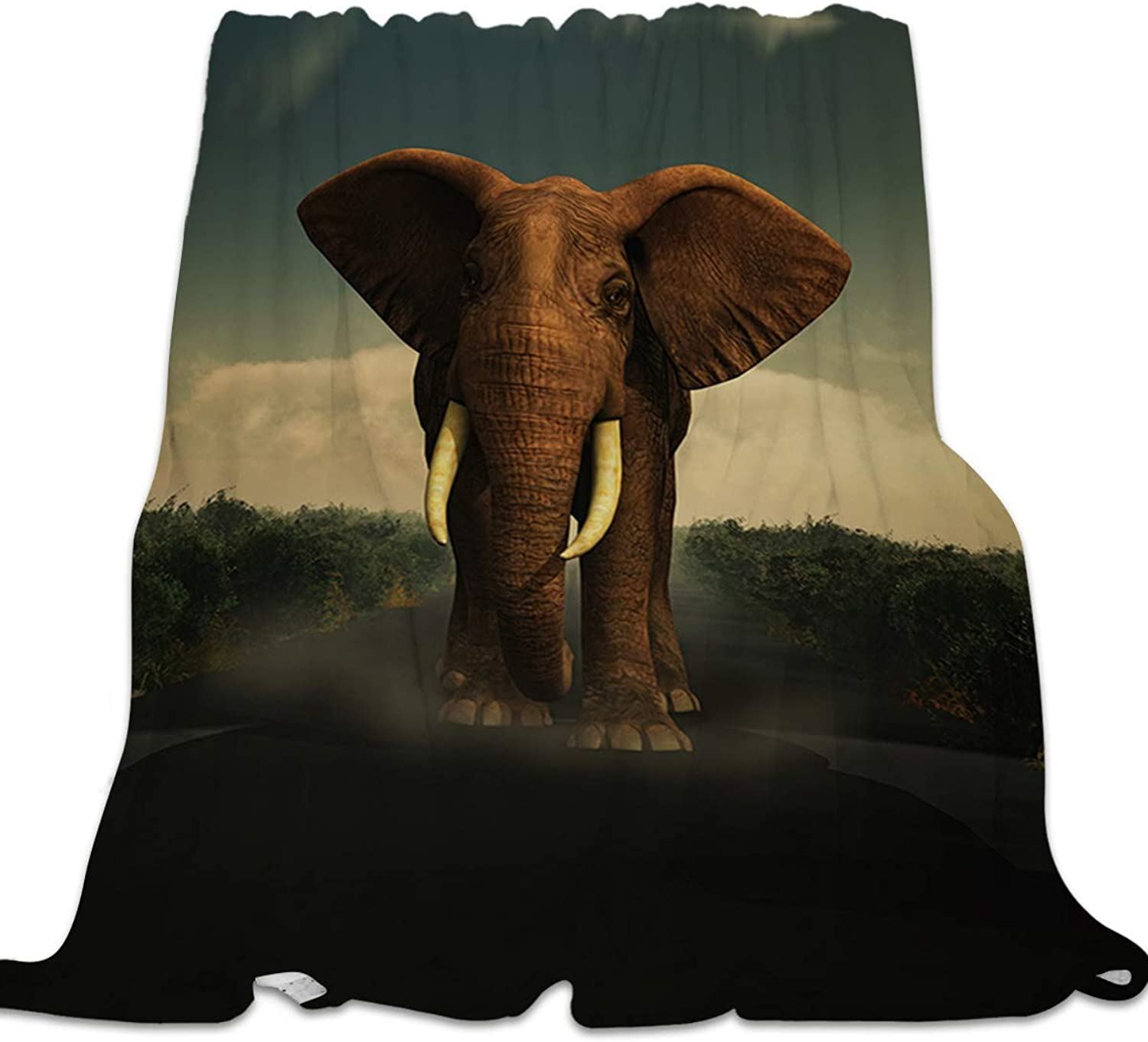 YEHO Art Gallery Flannel Fleece Bed Blanket Super Soft Cozy Throw-Blankets for Kids Girls Boys,Lightweight Blankets for Bed Sofa Couch Chair Day Nap,Cool 3D Elephant Animal Pattern,39x49inch