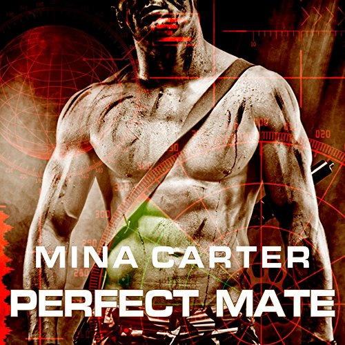 Perfect Mate cover art