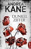 Dunkelziffer (Romantic Suspense der Bestseller-Autorin Andrea Kane 7)