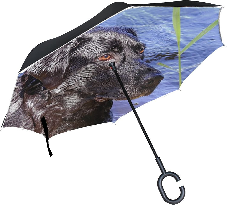 Animal Dog Labrador Retriever Black Animated Real Fluffy Puppy Cute Ingreened Umbrella Large Double Layer Outdoor Rain Sun Car Reversible Umbrella