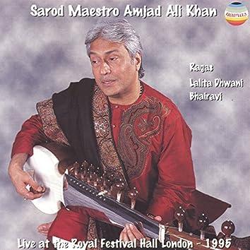 Live at the Royal Festival Hall 1995 (Ragas Lalita Dhwani Bhairavi)