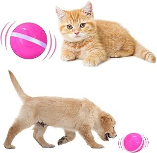 automatic dog ball