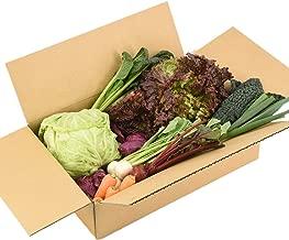 静岡県産 箱根南麓の伊豆の野菜お試しセット 9品目 無農薬 減農薬 機能性野菜 イタリア野菜