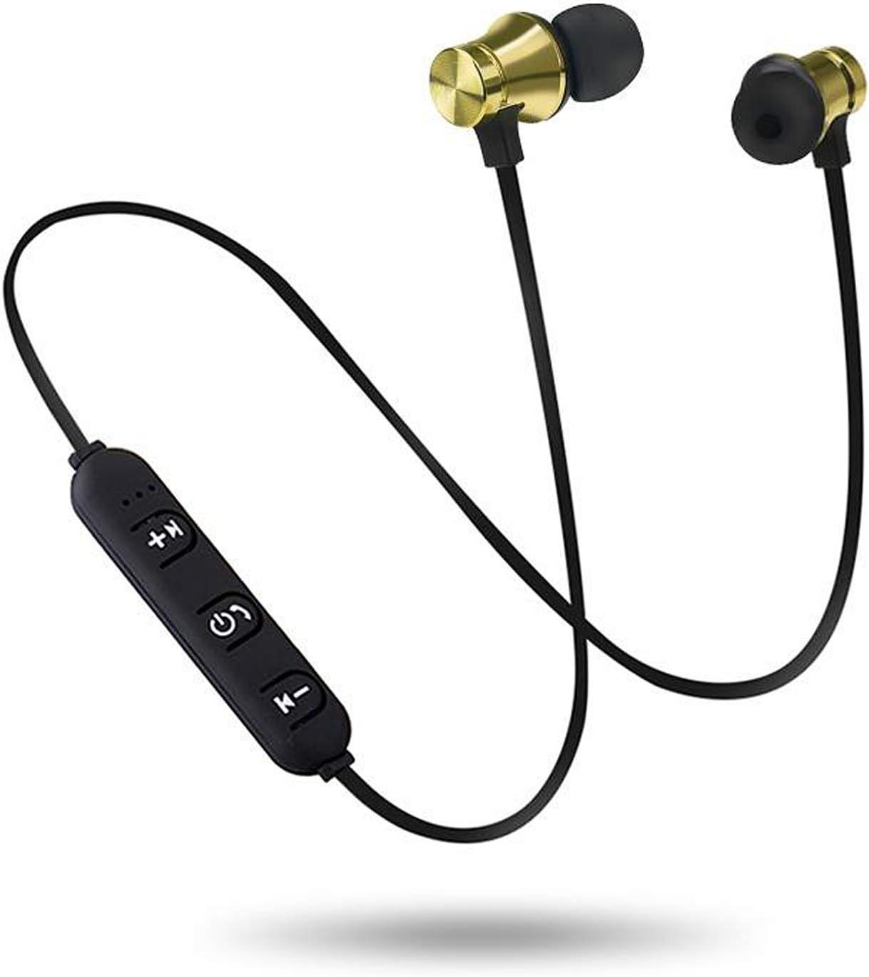 Wireless Bluetooth 4.2 Headphones Stereo Headset Sport in Ear Earphone Microphone by Creative Curiosities
