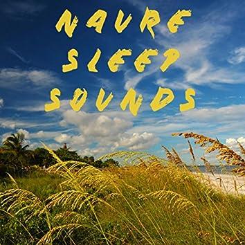 Naure Sleep Sounds