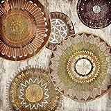 Feeling at home Imagen sobre Lienzo con Caja Americana Círculo I nativa Selkirk Impresion enmarcada con Marco Abstracto Cuadrado 64_X_64cm