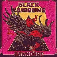 Hawkdope [12 inch Analog]