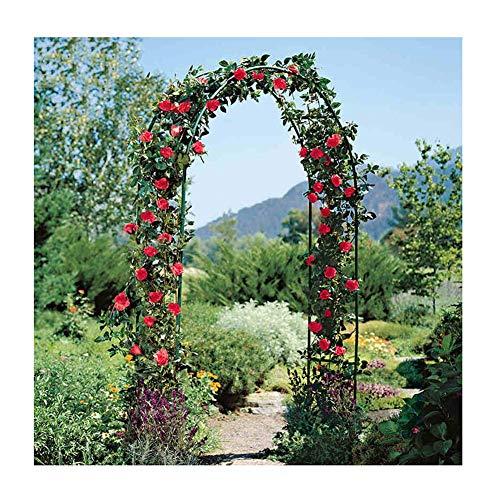 TCYLZ - Arco decorativo para jardín (metal, hierro forjado, diseño rústico, ideal para el cultivo de cualquier tipo de