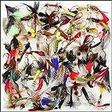 Sortiment von ohne Widerhaken Fliegenfischen Fliegen gemischt UK, trocken, Wet & Nymphe Signalempfnger Fliegen Set, Haken Gren 10, 12, 14, Anzahl der 10, 25, 50& 100, AS PER PICTURE, Mixed Barbless Size 12 (Qty 50)
