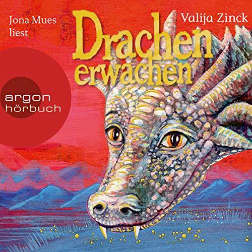 Drachenerwachen audiobook cover art