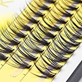 60 bundles of mink eyelashes natural 3D artificial eyelashes alone 20D tufted eyelashes makeup cilia (Curl :...
