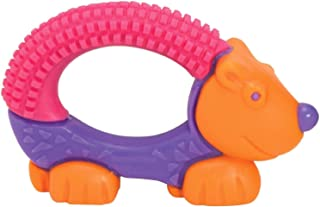 The First Years Bristle Buddy Teether - Assorted Design