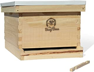 Amish Made in USA Langstroth Bee Hive Includes Frames and Foundations (1 Deep Box Starter Kit)