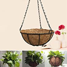 إناء / سلة نباتات مزخرفة بجوز الهند