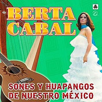 Sones y Huapangos de Nuestro México