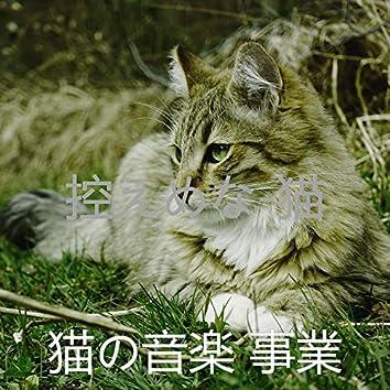 控えめな-猫