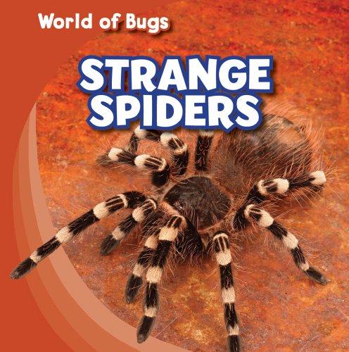 Strange Spiders (World of Bugs)