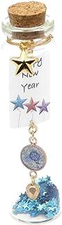 Bottiglia di vetro messaggio di felice anno nuovo decorazione floreale blu stella resina perla oro festa della mamma regal...