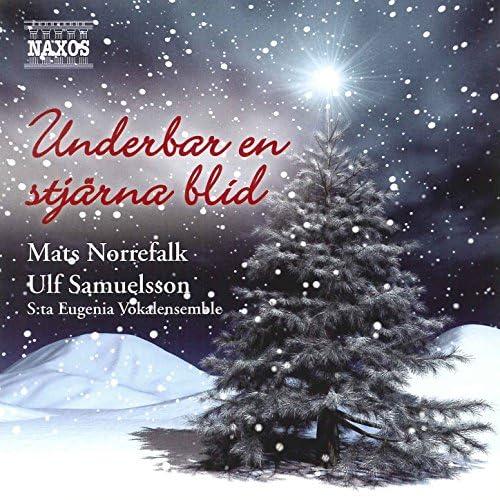 Mats Norrefalk, Ulf Samuelsson & Sankta Eugenia Vokalensemble