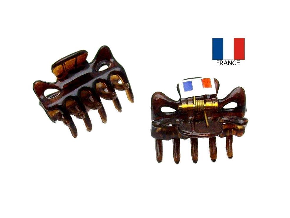 頼る終了する十一【Made in France】 バンスクリップ ミニミニ 2.7cm 2個セット ベッコウ