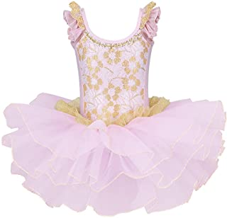 BAOHULU Girls Skirted Leotards Ballet Dance Tutu Princess Dress Ballerina Costumes B204_Pink_L