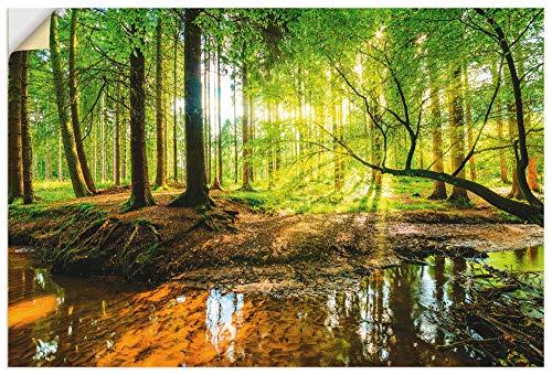 Artland Wandbild selbstklebend Vinylfolie 60x90 cm Wanddeko Wandtattoo Natur Landschaft Wald Bach Baum Sonne Frühling Ausblick T9IO