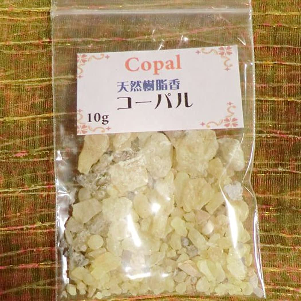 能力行為宿命コーパル COPAL (天然樹脂香) (コーパル, 10g)