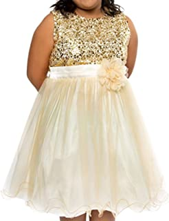Big Girls Sequin Junior Bridesmaid Wedding Pageant Flower Girl Dress 4-20.5 USA