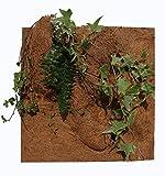 Reptiles Planet Natur Pflanzen Hintergrund für Terrarium