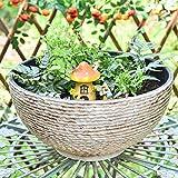 Sungmor Macetero hidropónico grande para jardín con micro paisaje,...