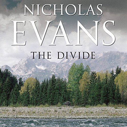 The Divide cover art