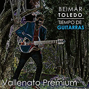Tiempo de Guitarras