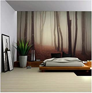 wall26 - Dark and Mysterious Forest - Wall Mural, Removable Sticker, Home Decor - 100x144 inches