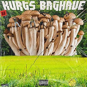 Kurts Baghave